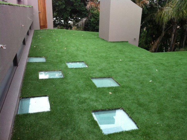 Want a 'green' roof?
