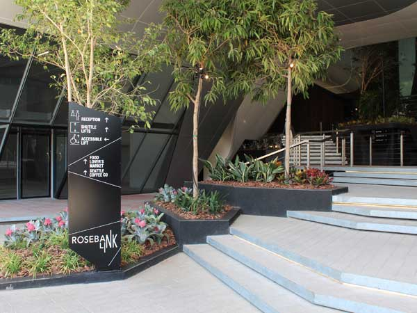 Green Roof and Plant Box Systems