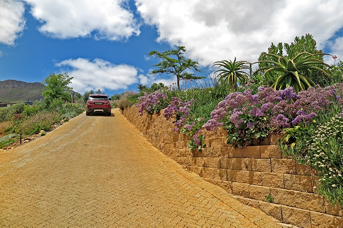 Multi-purpose retaining walls at popular Cape Winery