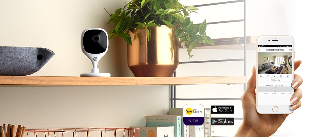 IP Cameras for Home View