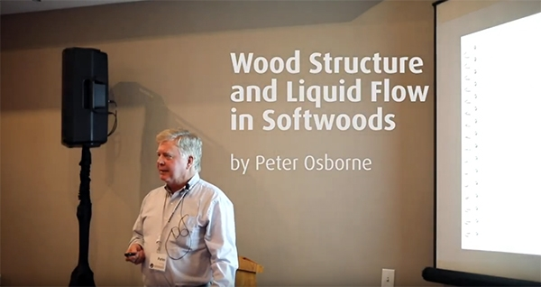 Wood Structure and Liquid Flow in Softwoods Peter Osborne